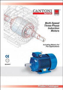 Multi-Speed Three Phase Induction Motors (1)